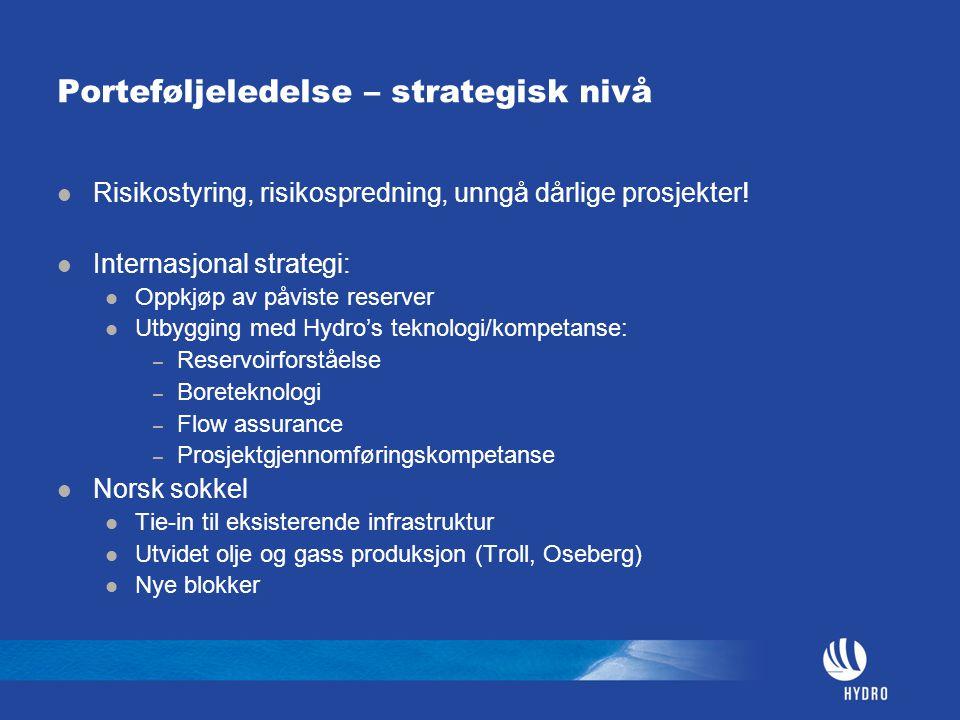 Porteføljeledelse – strategisk nivå