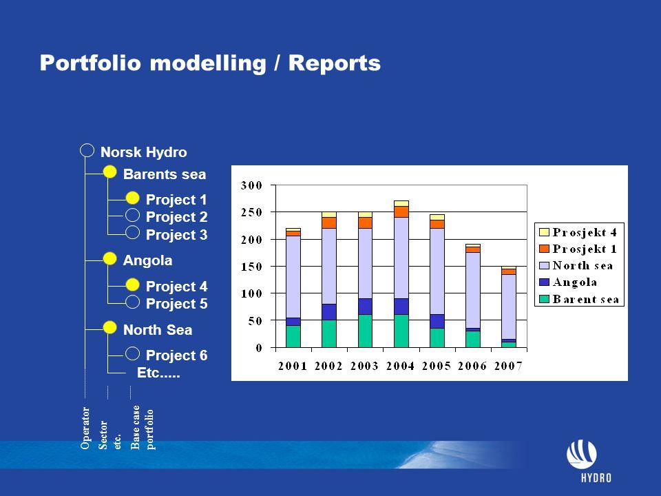 Portfolio modelling / Reports