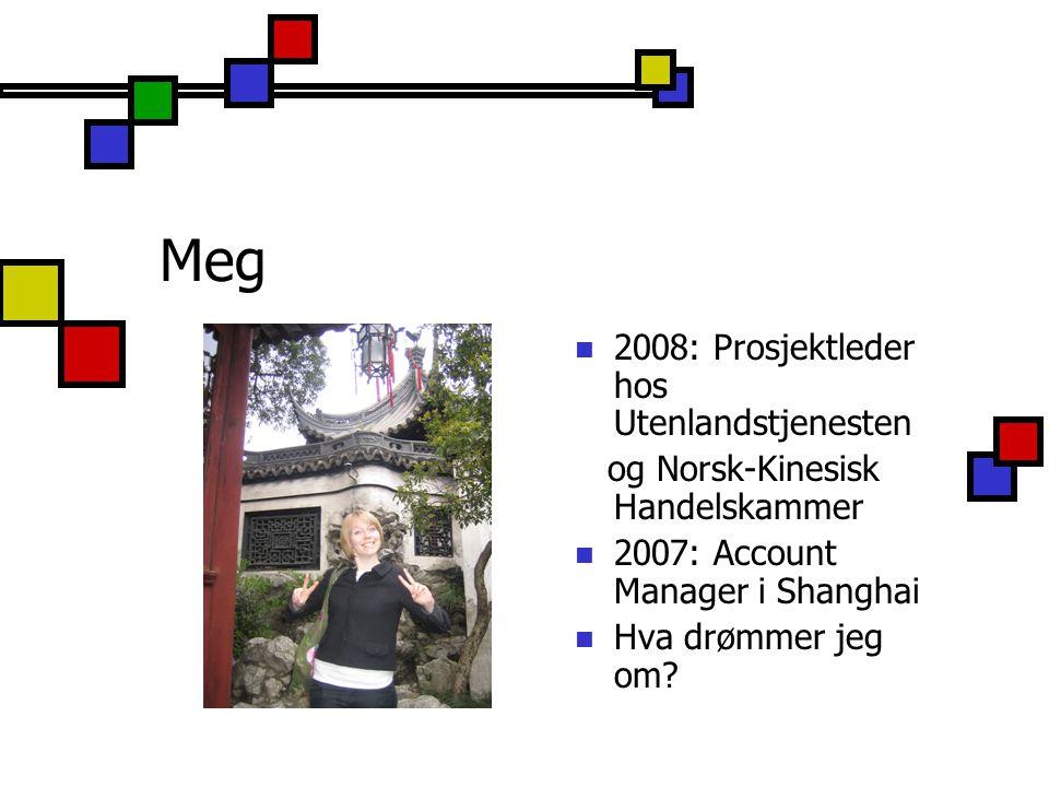 Meg 2008: Prosjektleder hos Utenlandstjenesten
