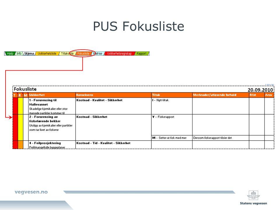 PUS Fokusliste Man kan også få opp en fokusliste over usikkerhetene man har kommet opp med.
