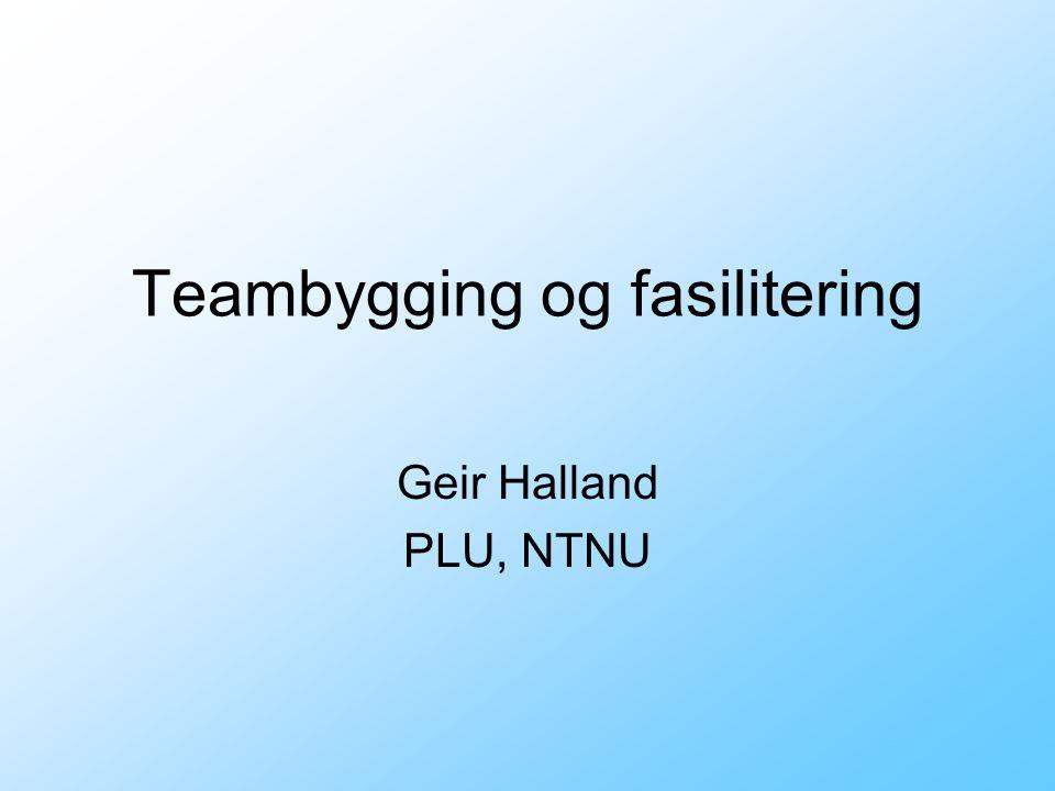 Teambygging og fasilitering