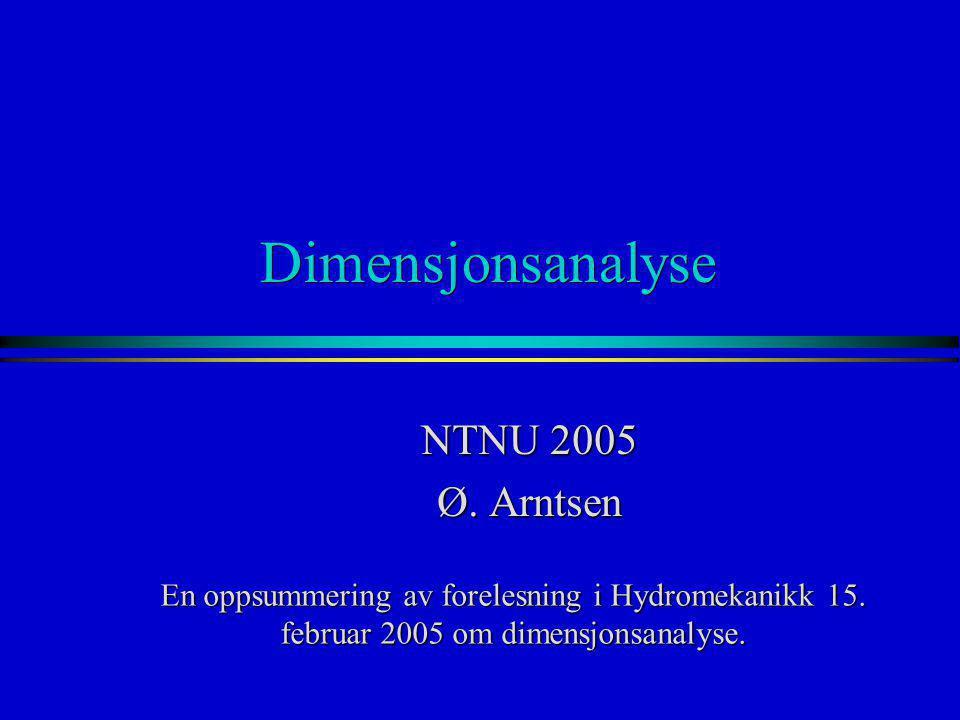 Dimensjonsanalyse NTNU 2005 Ø. Arntsen