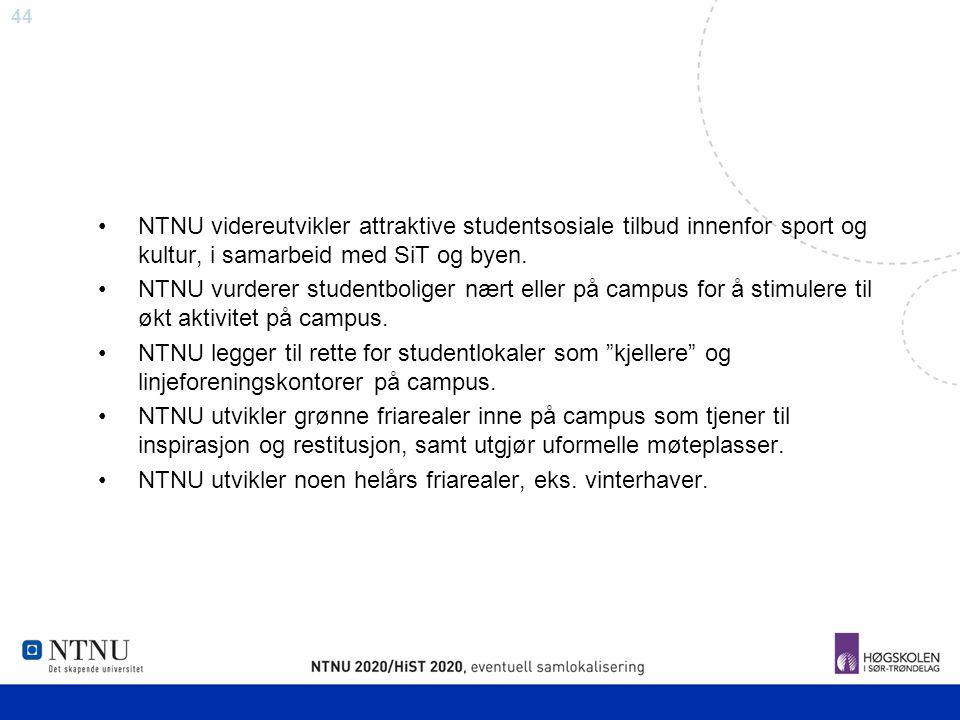 NTNU videreutvikler attraktive studentsosiale tilbud innenfor sport og kultur, i samarbeid med SiT og byen.