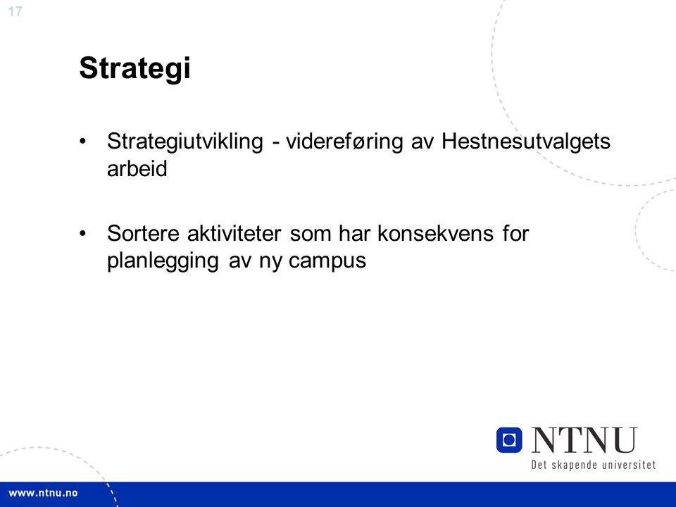 Strategi Strategiutvikling - videreføring av Hestnesutvalgets arbeid