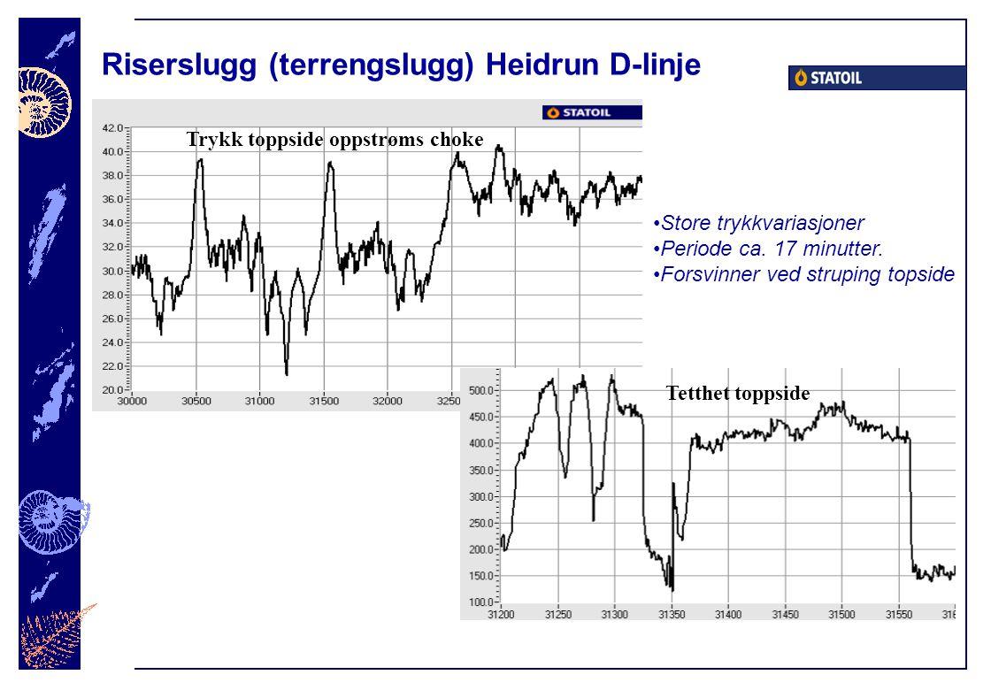 Riserslugg (terrengslugg) Heidrun D-linje