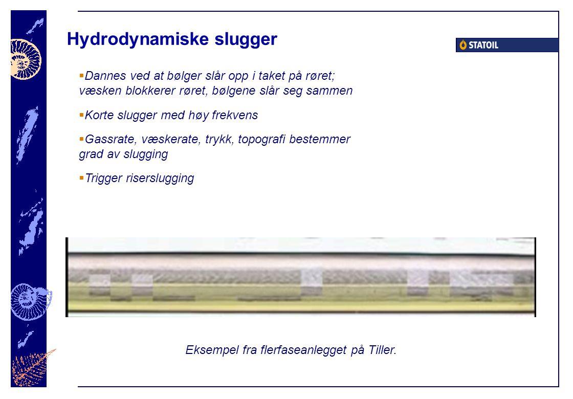 Hydrodynamiske slugger