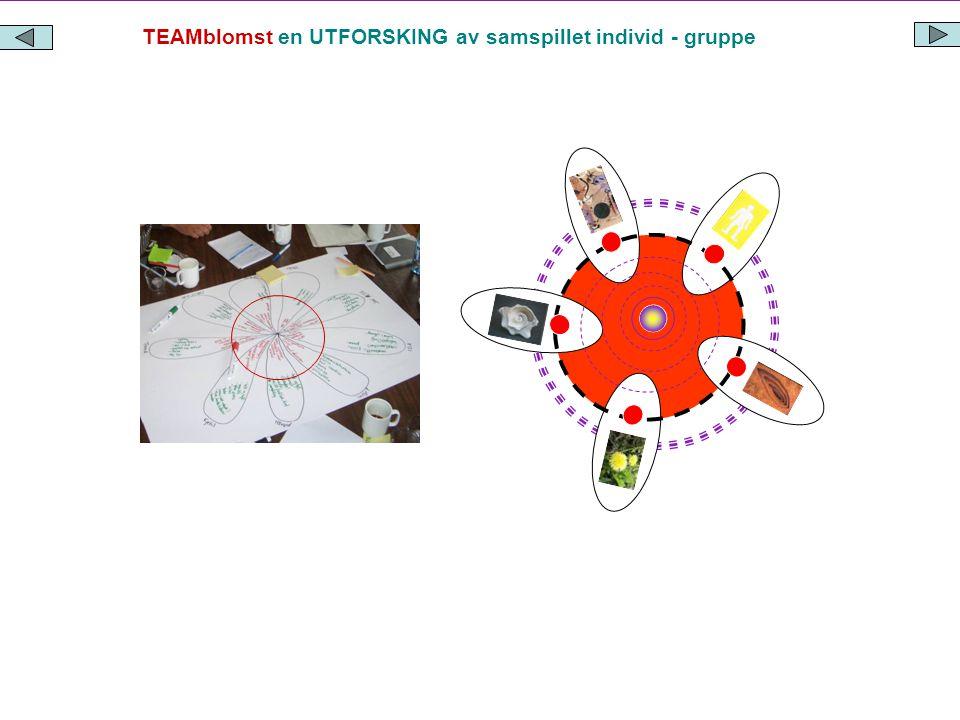 TEAMblomst en UTFORSKING av samspillet individ - gruppe