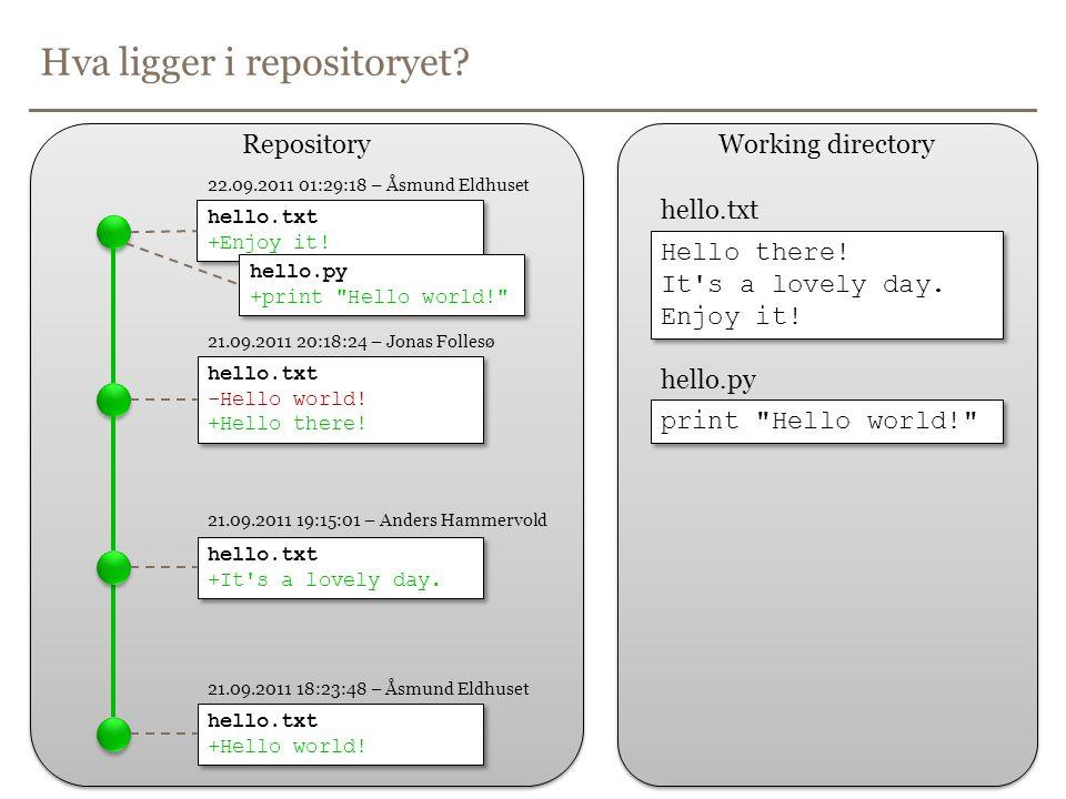 Hva ligger i repositoryet