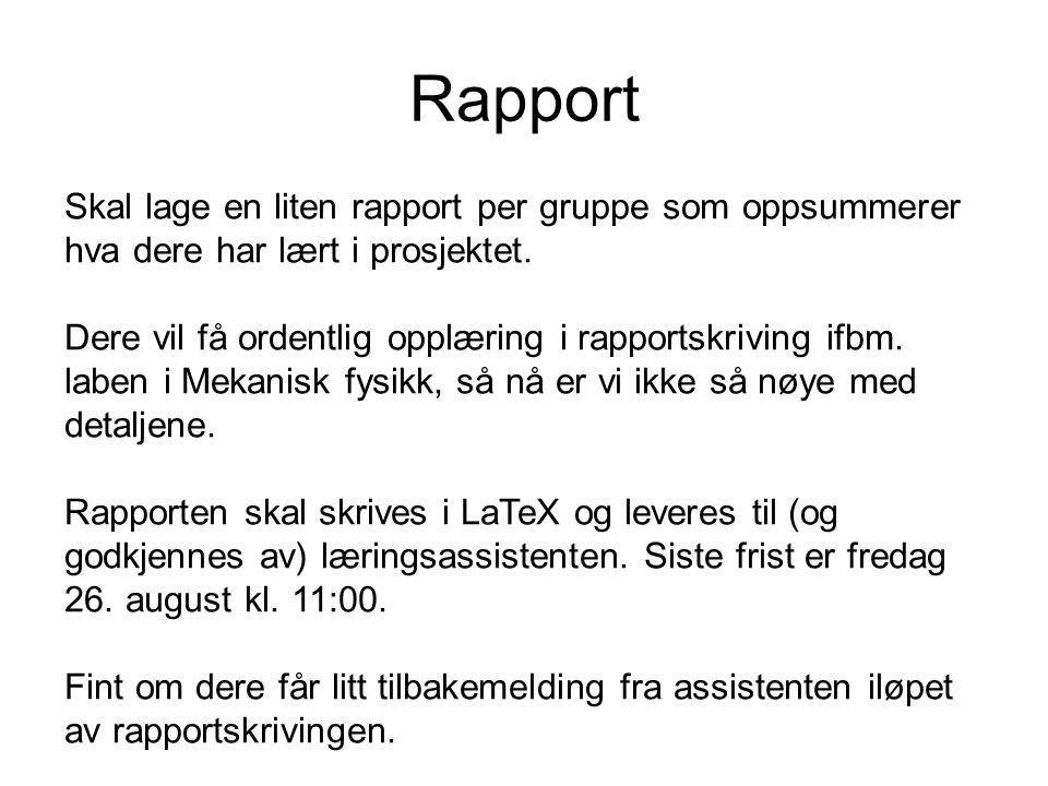 Rapport Skal lage en liten rapport per gruppe som oppsummerer hva dere har lært i prosjektet.