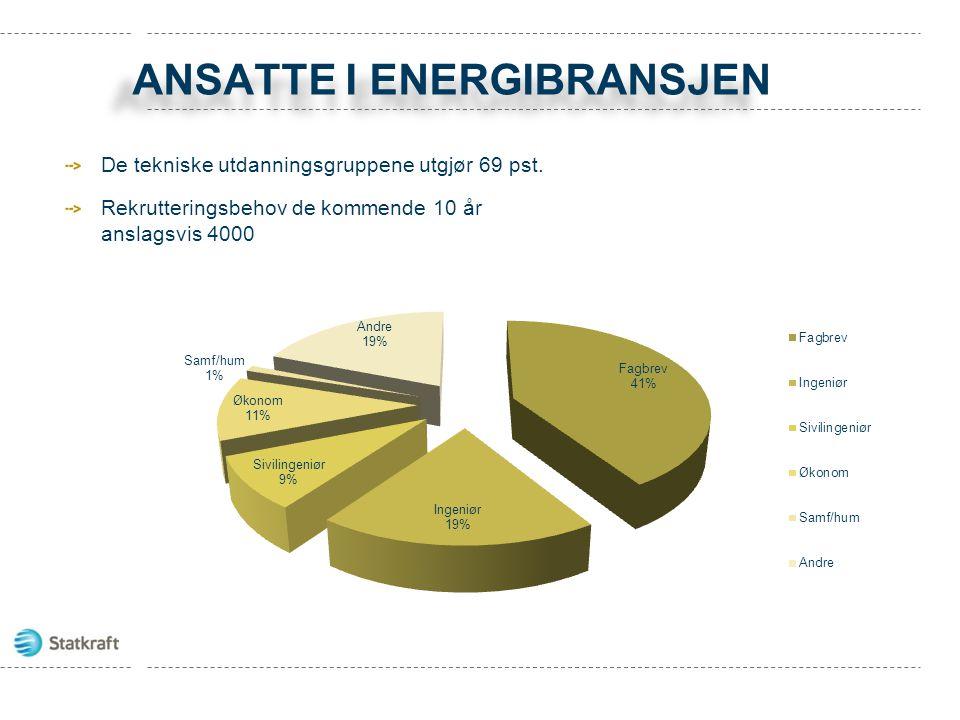 Ansatte i energibransjen