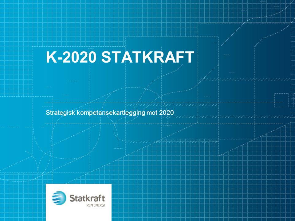 Strategisk kompetansekartlegging mot 2020