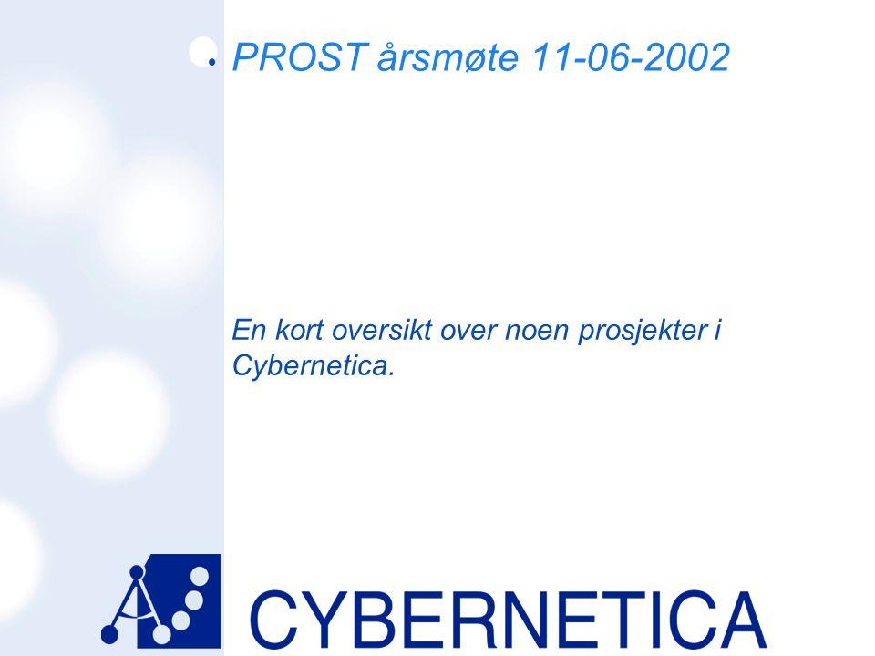 En kort oversikt over noen prosjekter i Cybernetica.