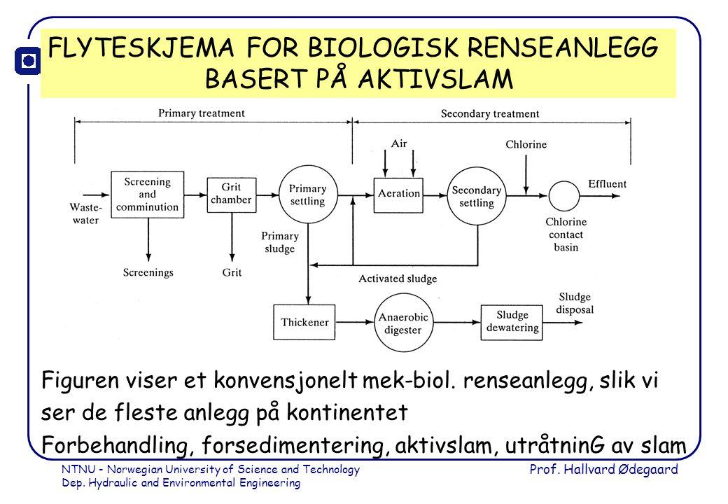 FLYTESKJEMA FOR BIOLOGISK RENSEANLEGG BASERT PÅ AKTIVSLAM