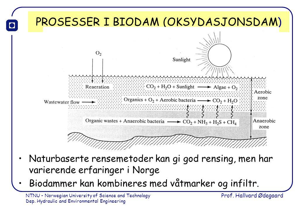 PROSESSER I BIODAM (OKSYDASJONSDAM)