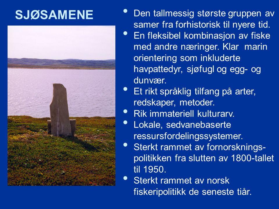 SJØSAMENE Den tallmessig største gruppen av samer fra forhistorisk til nyere tid.