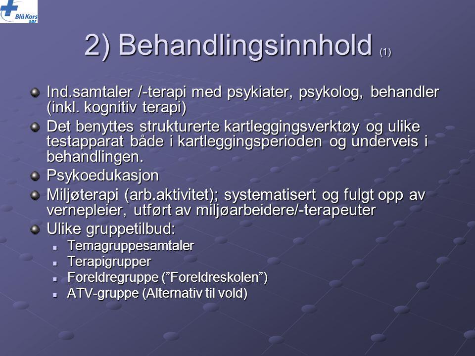 2) Behandlingsinnhold (1)