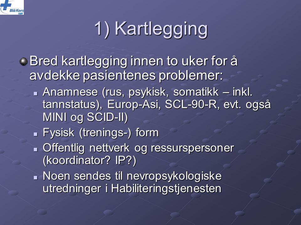 1) Kartlegging Bred kartlegging innen to uker for å avdekke pasientenes problemer: