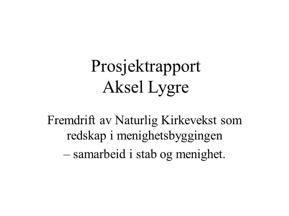 Prosjektrapport Aksel Lygre
