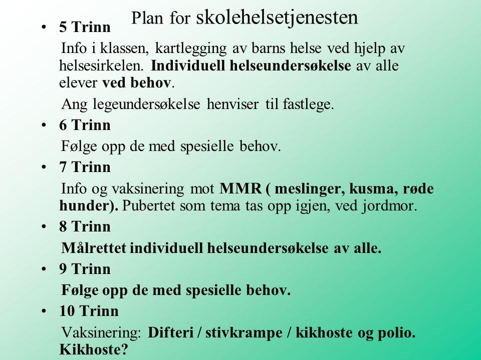 Plan for skolehelsetjenesten