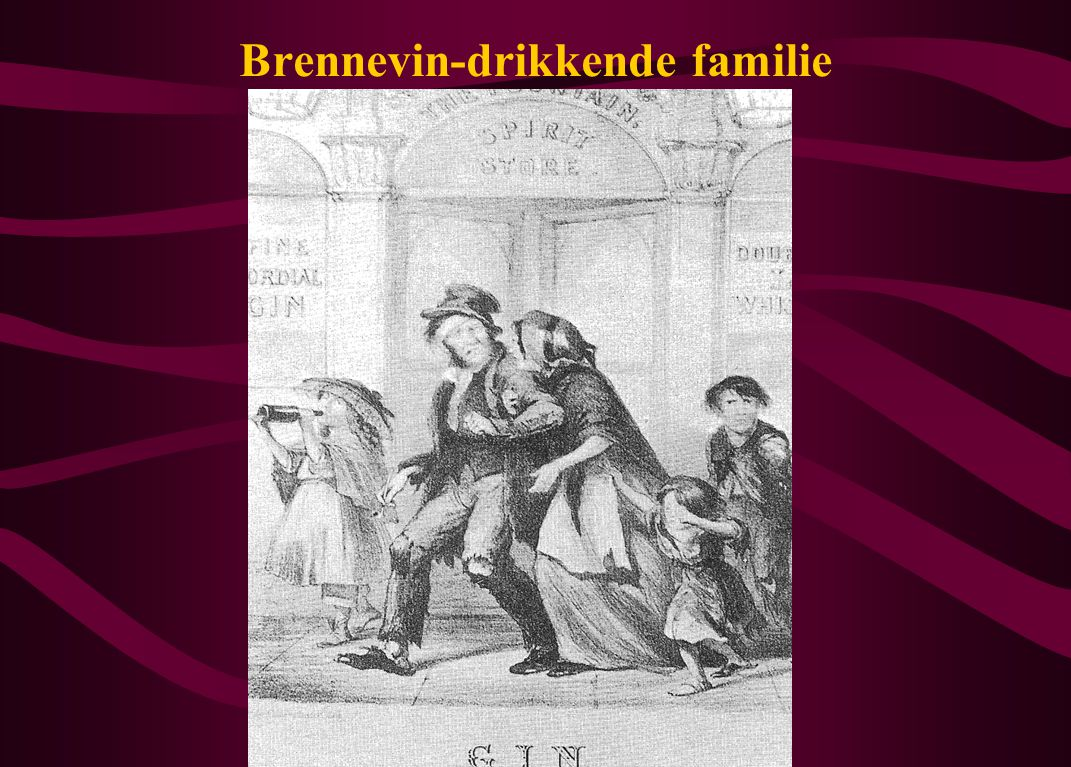 Brennevin-drikkende familie