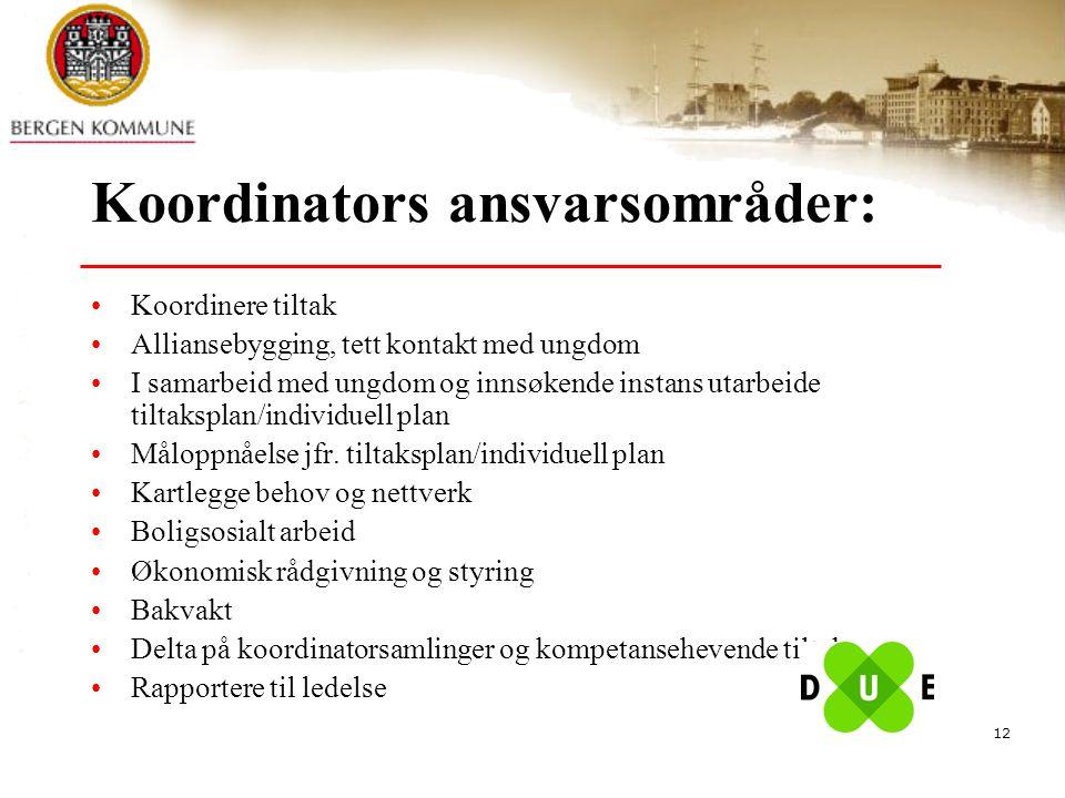 Koordinators ansvarsområder: