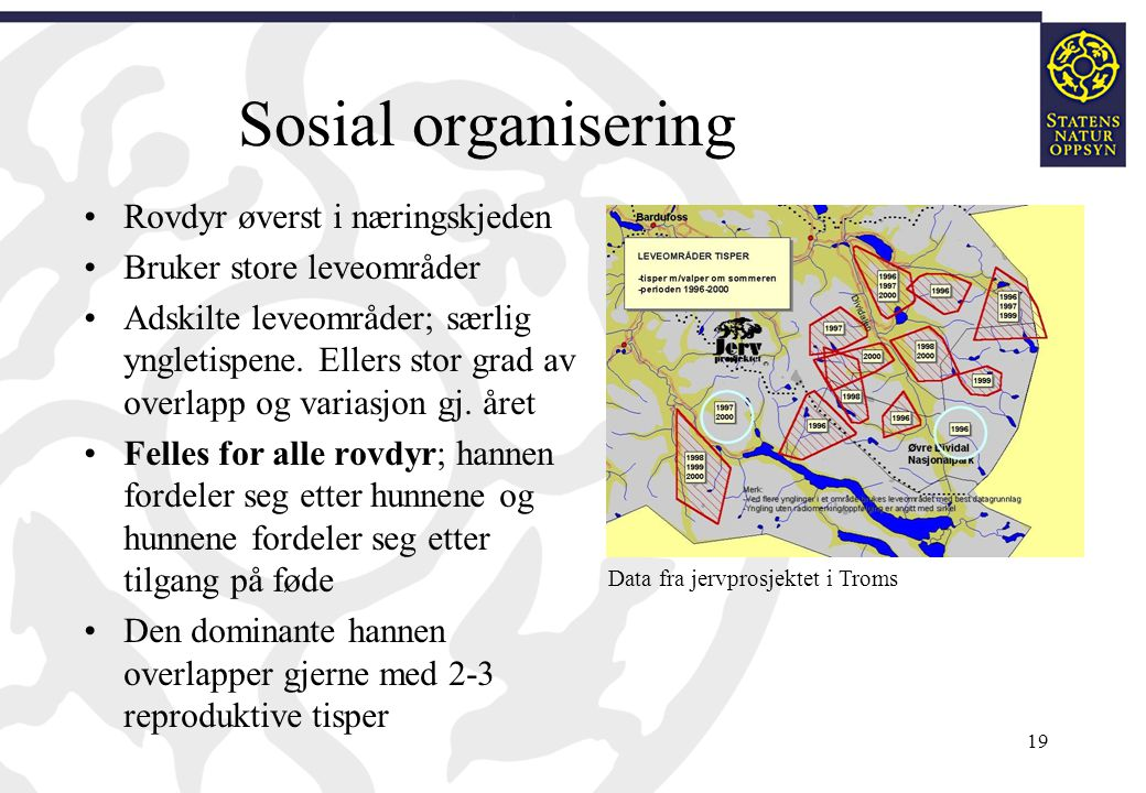 Sosial organisering Rovdyr øverst i næringskjeden