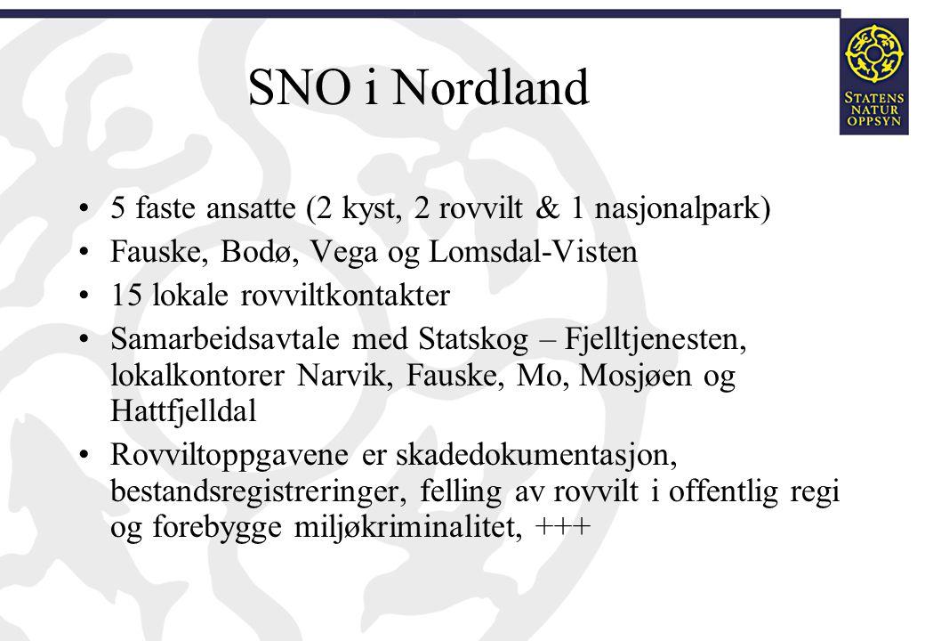 SNO i Nordland 5 faste ansatte (2 kyst, 2 rovvilt & 1 nasjonalpark)