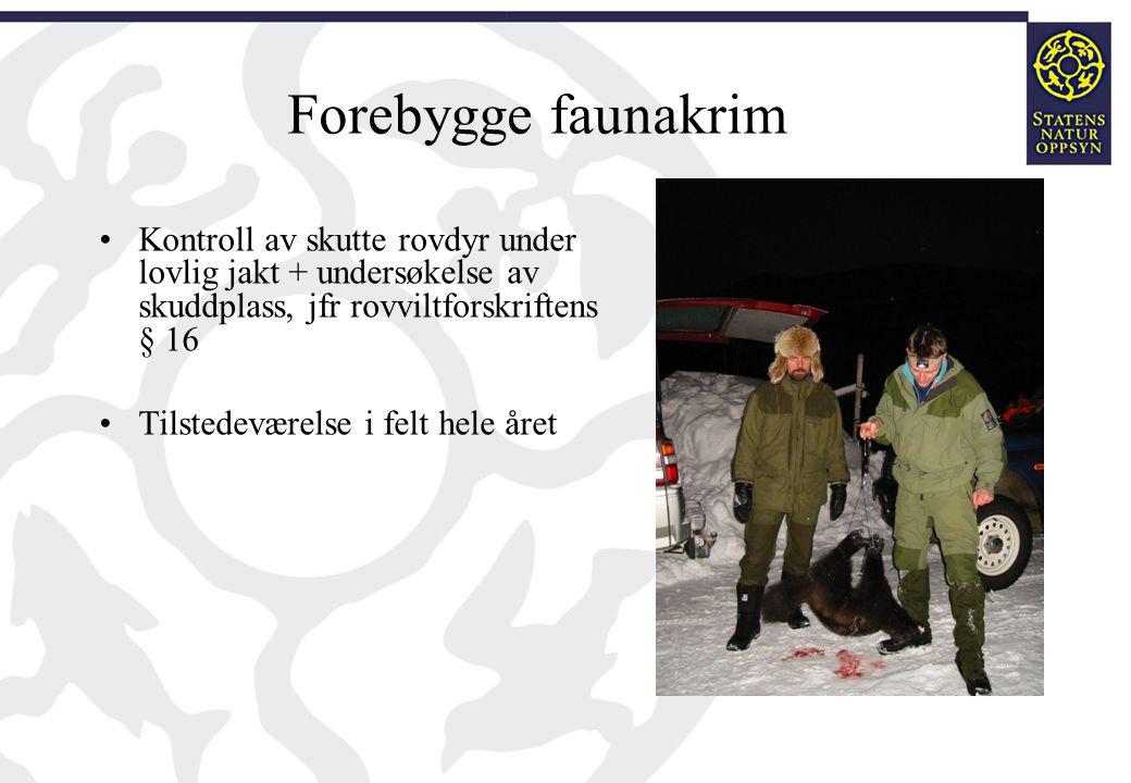 Forebygge faunakrim Kontroll av skutte rovdyr under lovlig jakt + undersøkelse av skuddplass, jfr rovviltforskriftens § 16.