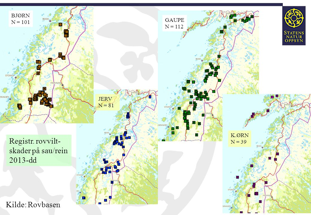 Registr. rovvilt- skader på sau/rein 2013-dd Kilde: Rovbasen BJØRN