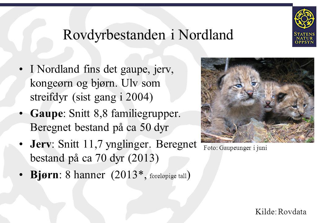 Rovdyrbestanden i Nordland