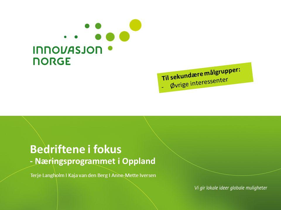 Bedriftene i fokus - Næringsprogrammet i Oppland