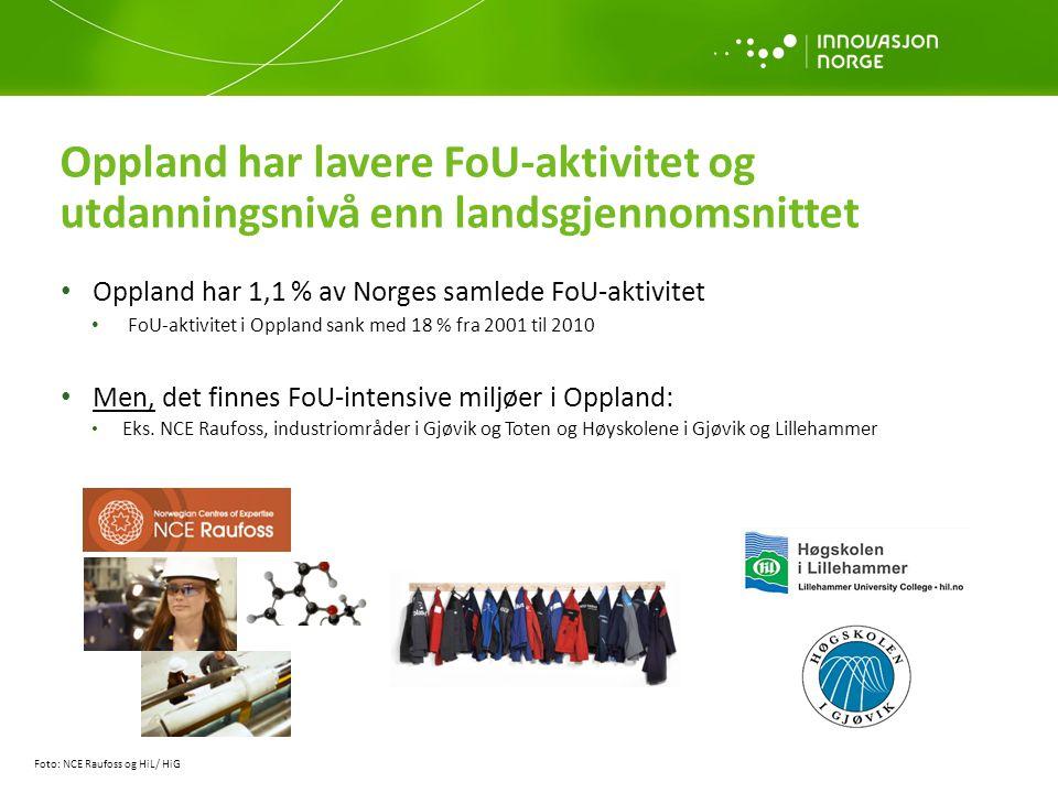 Oppland har lavere FoU-aktivitet og utdanningsnivå enn landsgjennomsnittet