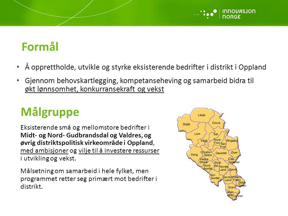 Formål Å opprettholde, utvikle og styrke eksisterende bedrifter i distrikt i Oppland.