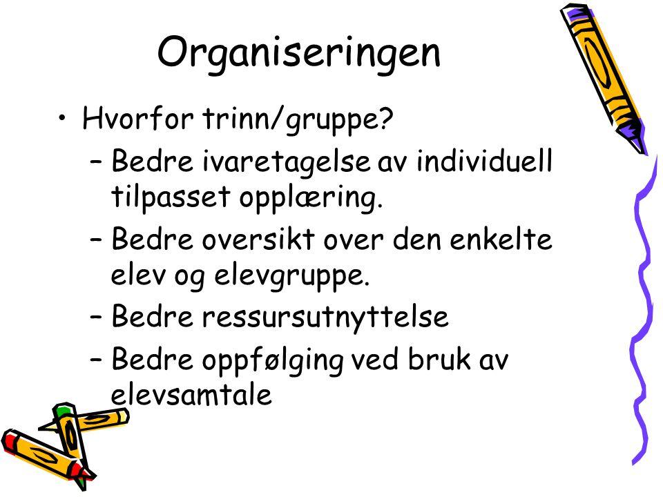 Organiseringen Hvorfor trinn/gruppe