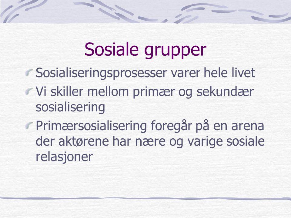 Sosiale grupper Sosialiseringsprosesser varer hele livet