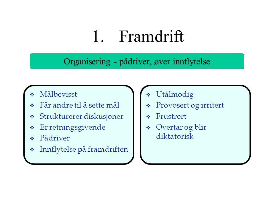 Organisering - pådriver, øver innflytelse