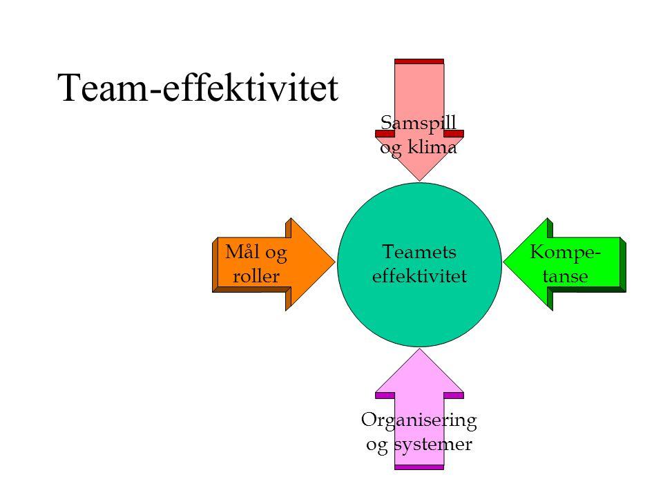 Team-effektivitet Samspill og klima Mål og roller Teamets effektivitet