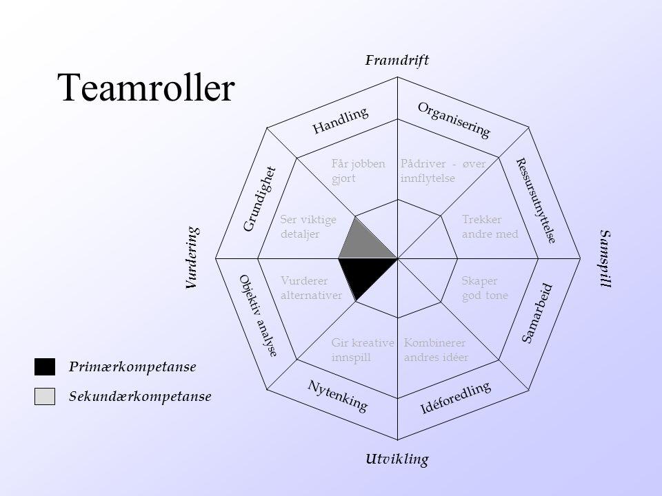 Teamroller Framdrift Vurdering Samspill Primærkompetanse