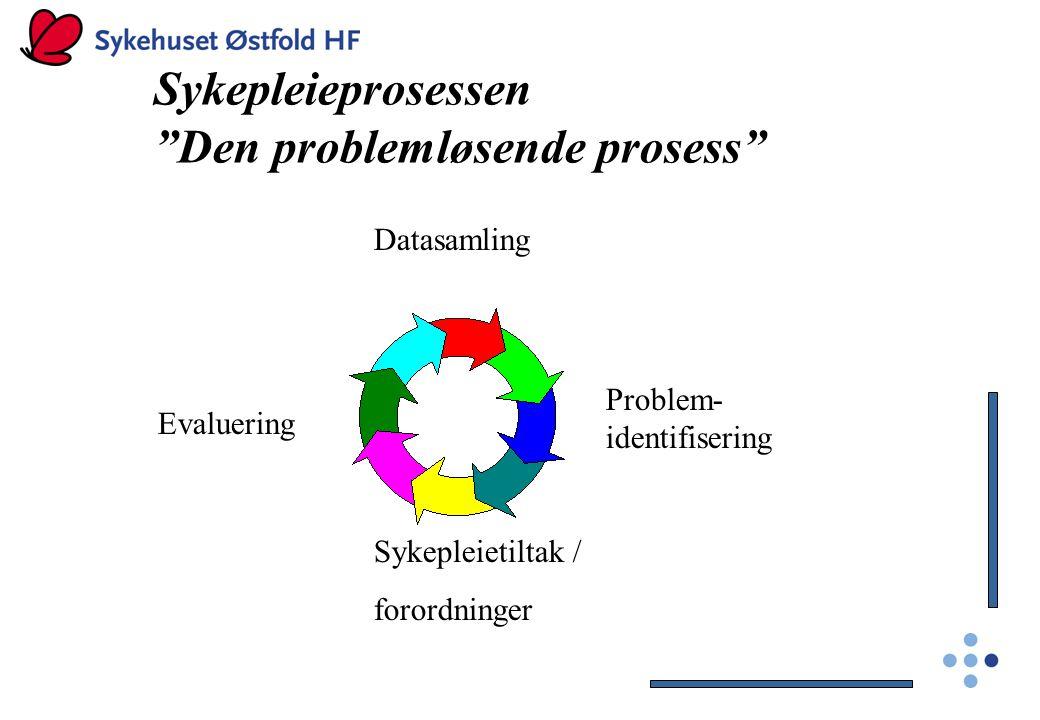 Den problemløsende prosess