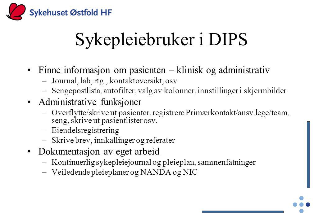 Sykepleiebruker i DIPS