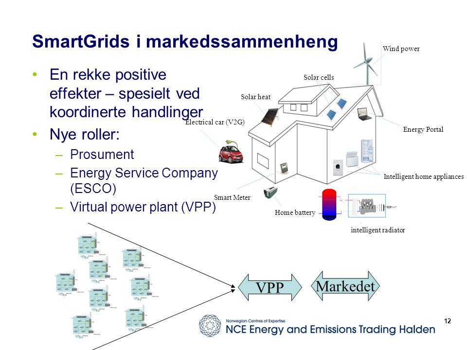 SmartGrids i markedssammenheng