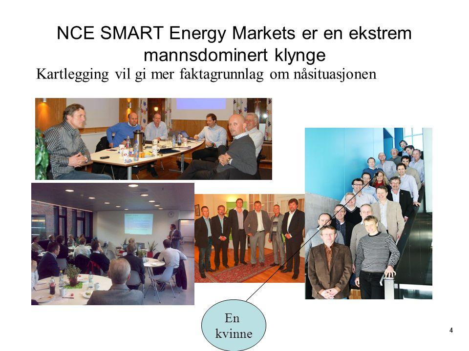 NCE SMART Energy Markets er en ekstrem mannsdominert klynge