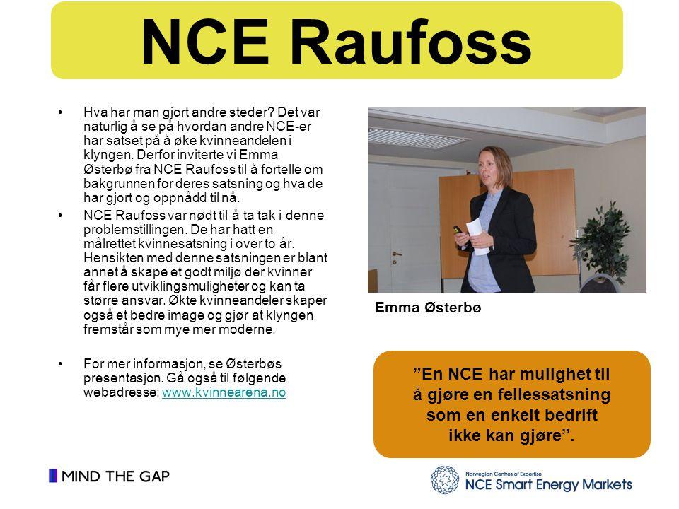 En NCE har mulighet til å gjøre en fellessatsning