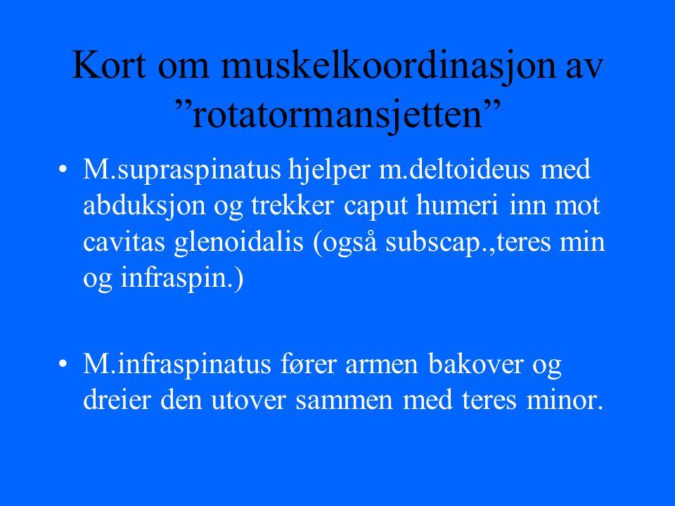 Kort om muskelkoordinasjon av rotatormansjetten