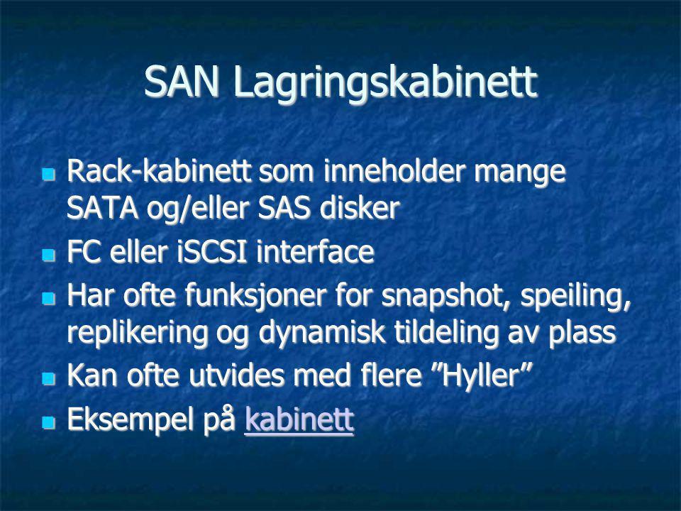 SAN Lagringskabinett Rack-kabinett som inneholder mange SATA og/eller SAS disker. FC eller iSCSI interface.