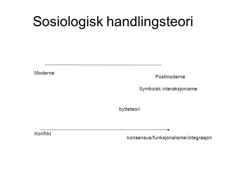 Sosiologisk handlingsteori
