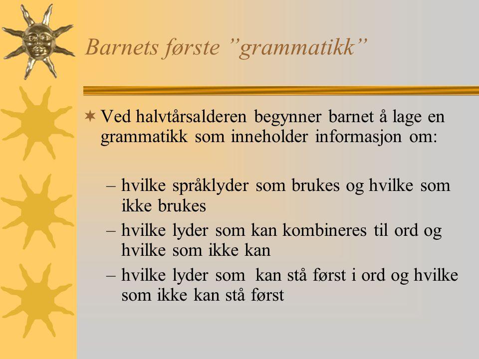 Barnets første grammatikk
