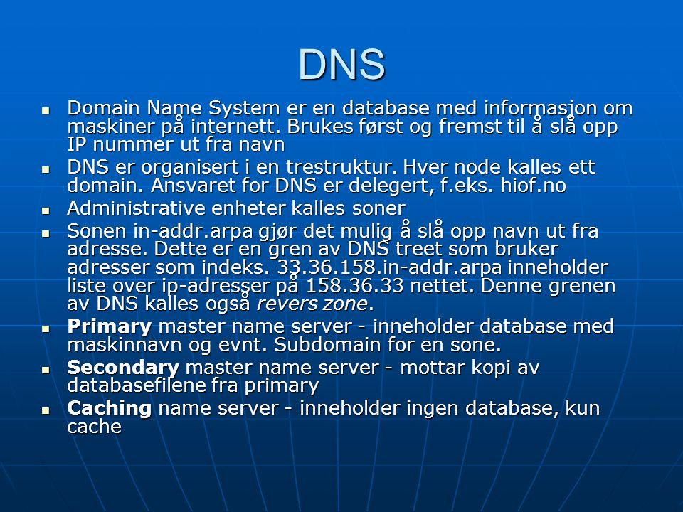 DNS Domain Name System er en database med informasjon om maskiner på internett. Brukes først og fremst til å slå opp IP nummer ut fra navn.