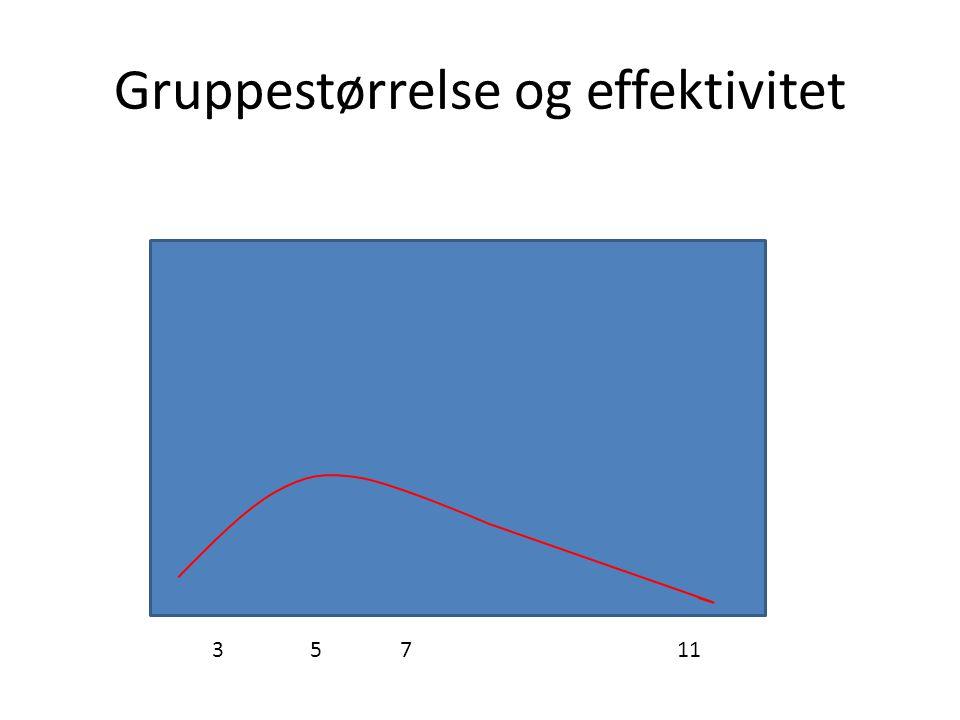 Gruppestørrelse og effektivitet