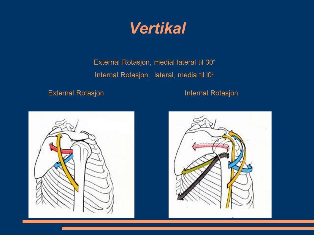 Vertikal External Rotasjon, medial lateral til 30°